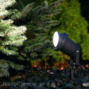 Lampa BUSH GRAFIT